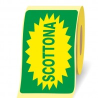 Scottona